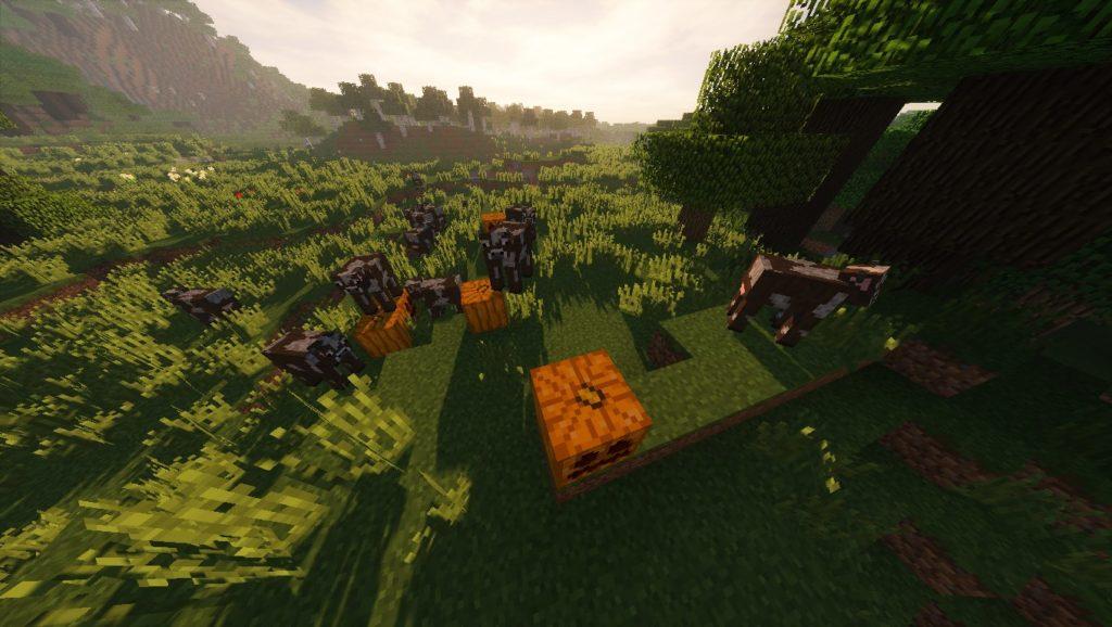 Minecraft Seeds: MOJANG